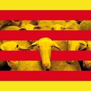 separata catalan