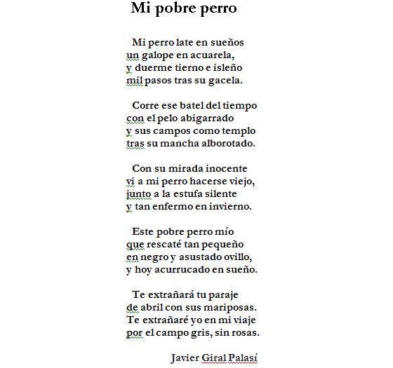 poema mi perro